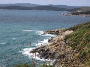The rugged coastline directly beneath the boardwalk.