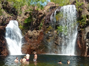 Beautiful Florence Falls, powerful enough to knock sunglasses off your head.