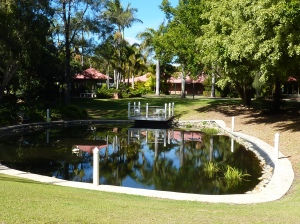 A pretty pond with seat in the sun. A pleasant place to sit in the sun and read a book.