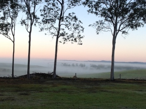 Early morning mist over the valley.