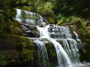 Liffey Falls.