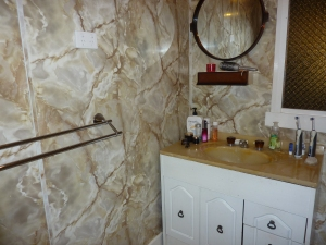 The existing bathroom, comes complete with shower over a 1970s mission brown bath - picture perfect - so not!