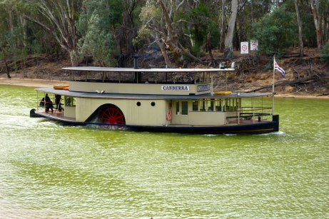 Our Paddle Steamer