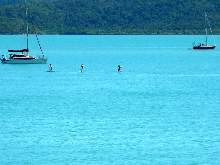 Paddle boarders on hired boards.