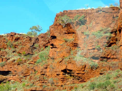 Iron-ore rich, red Pilbara country.