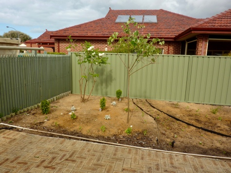 A more private colour bond fence has now been erected.
